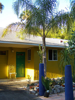 Syagrus-romanzoffiana, Queen Palm, Cocos plumosa